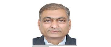 Prof. Narendra S. Chaudhari